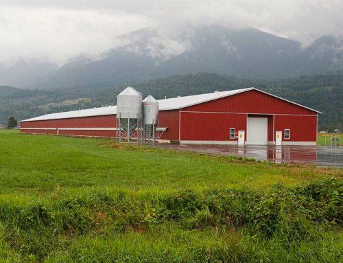 A purhab a mezőgazdaságban és állattenyésztésben is jól teljesít